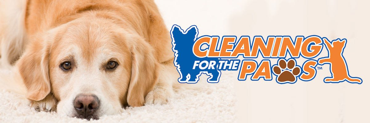 cleaning for the paws banner
