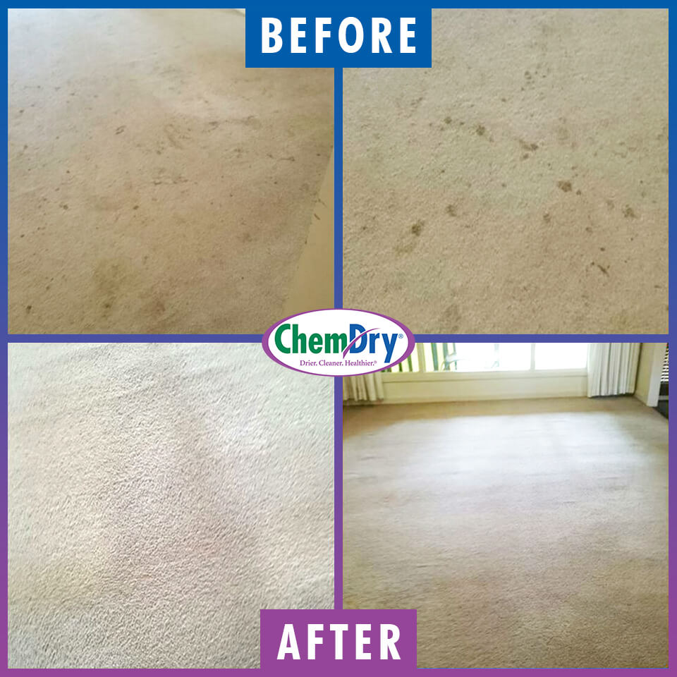 before and after carpet cleaning in gastonia