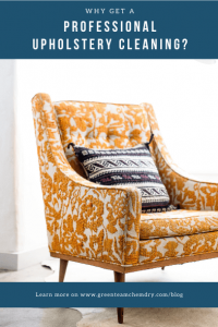 Why Get a Professional Upholstery Cleaning Graphic