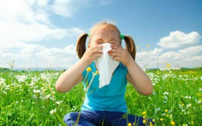 Reduce Spring Allergies with Professional Carpet Cleaning