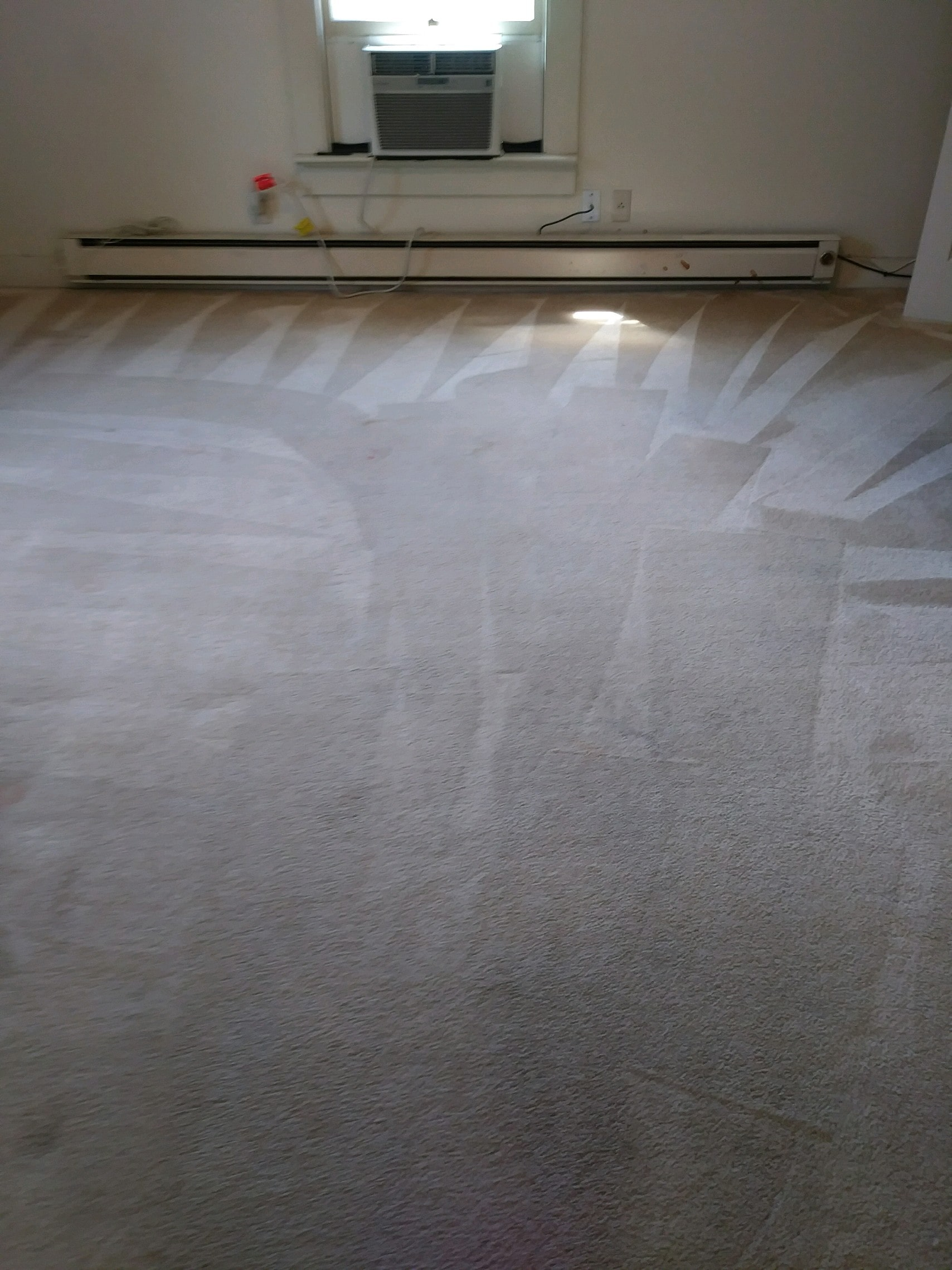 after carpet cleaning high shoals nc