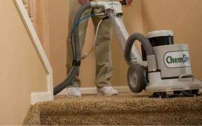 FAQ: How Do I Know If My Carpets Need to Be Professionally Cleaned?